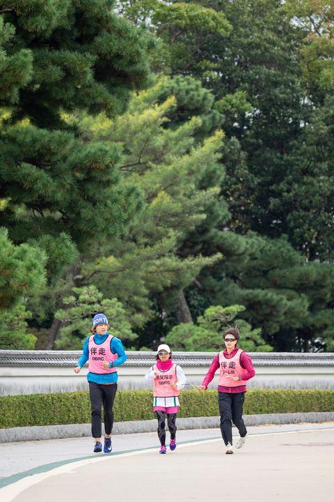 People, Leisure, Tree, Pink, Walking, Recreation, Running, Botany, Child, Vacation,