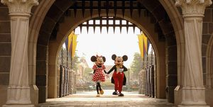 mickey minnie disneyland