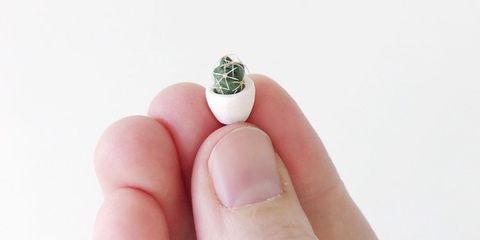 Nail, Finger, Skin, Ring, Hand, Fashion accessory, Manicure, Nail care, Plant, Nail polish,