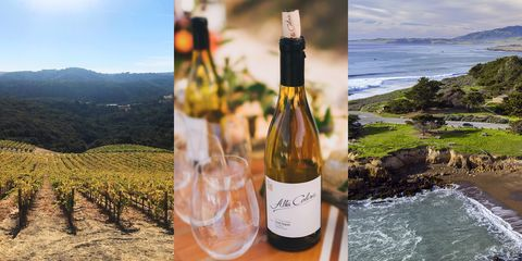 Best Santa Ynez Valley Wineries - Best California Central Coast Wineries to Visit