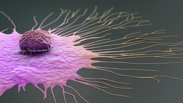 migrating breast cancer cell, illustration