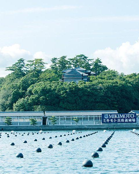 mikimoto珍珠養殖場