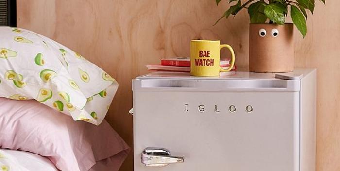 10 Best Mini Dorm Fridges
