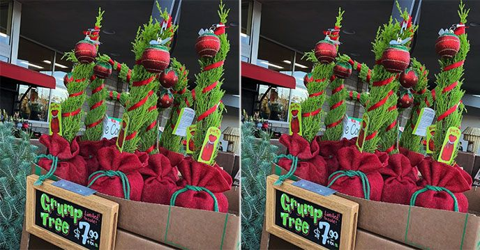 Trader Joe's Is Selling Grump Christmas Trees That Will Cheer Up The Grinch In Your Life