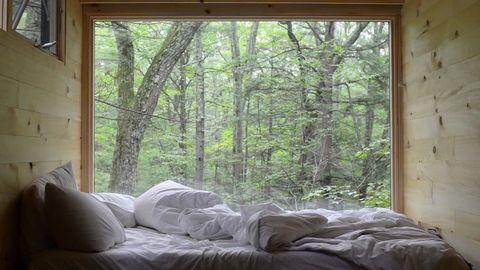 Minicasa en el bosque