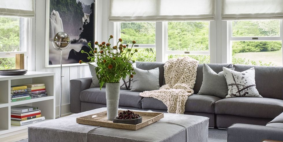 Image Result For Best Place To Buy Carpet
