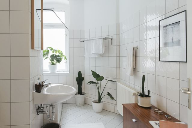 toilet flush coronavirus   women's health uk