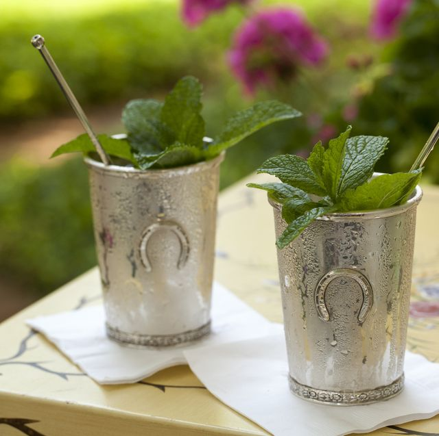 15 Mint Julep Drinks In 2020