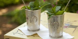 Mint Julep in Kentucky Derby Style Metal Cup