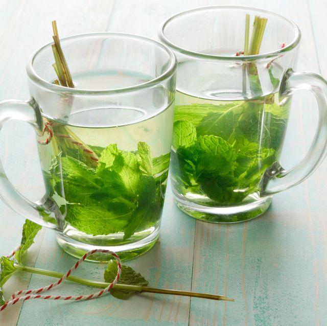 hot drinks mint tea