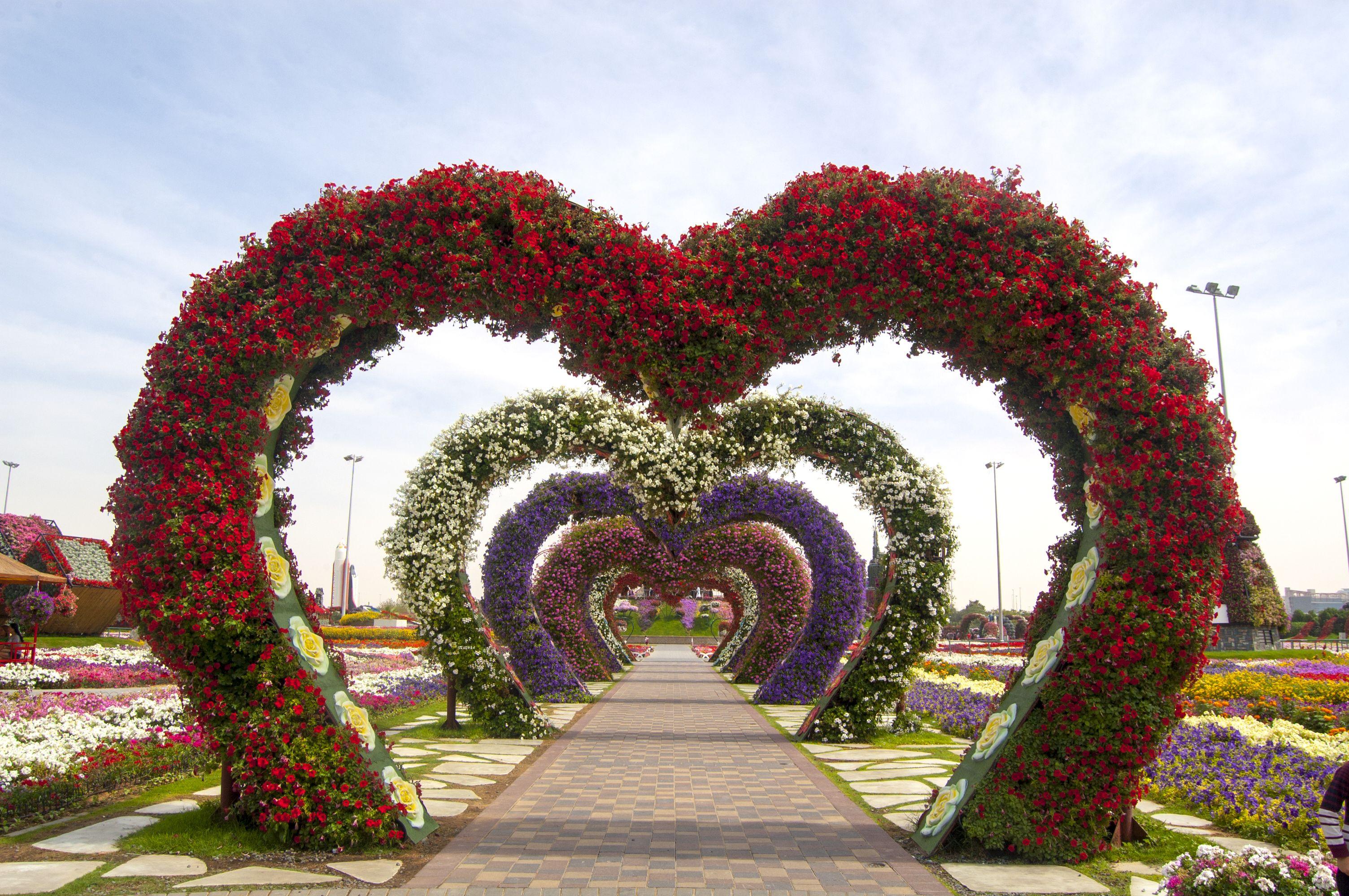Dubai Miracle Garden A Virtual Tour Of The Famous Flower Garden