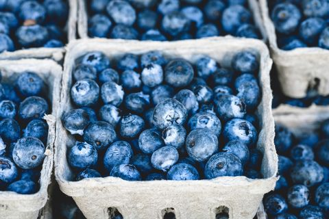 Blue, Bilberry, Blueberry, Berry, Superfood, Fruit, Prune, Food, Plant, Prunus spinosa,