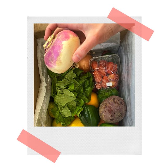 melanie picking up a rutabaga from her misfits market produce delivery box