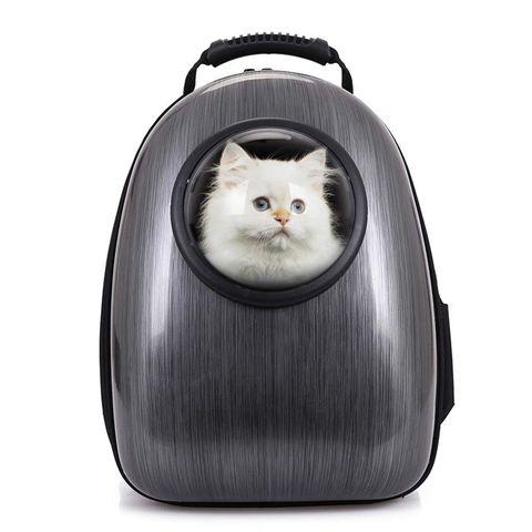 Estos son todos los accesorios para mascotas que hemos seleccionado para hacerles la vida más feliz.