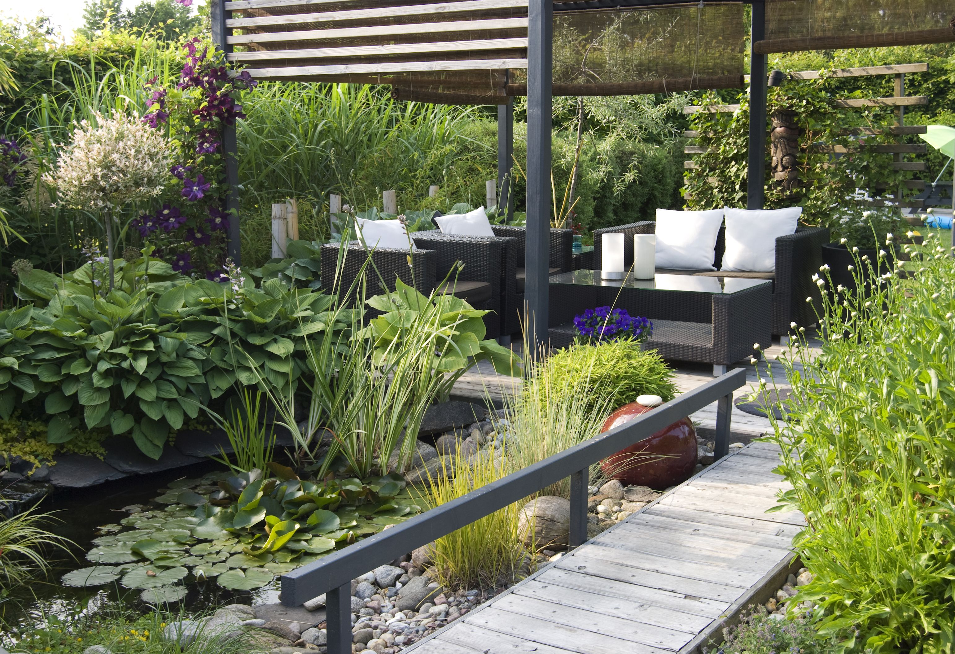 6 questions to ask your garden designer