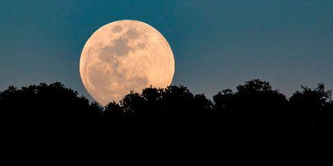 Moon, Sky, Full moon, Nature, Celestial event, Astronomical object, Daytime, Atmospheric phenomenon, Moonlight, Atmosphere,
