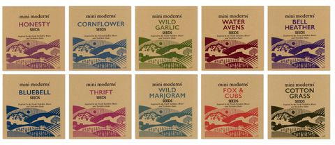 mini moderns wild flower seeds