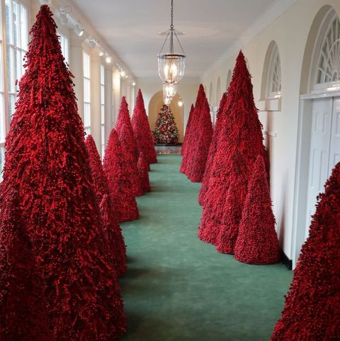 Red, Christmas decoration, Tree, Christmas tree, Christmas, Interior design, Room, Architecture, Plant, Holiday ornament,