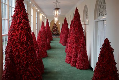 More than 40 red topiary trees line the East colonnade as part of the holiday decorations at the White House November 26, 20