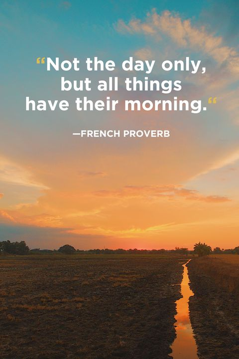 French Proverb Good Morning Quotes