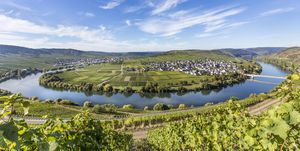 European river cruises - Moselle river cruise