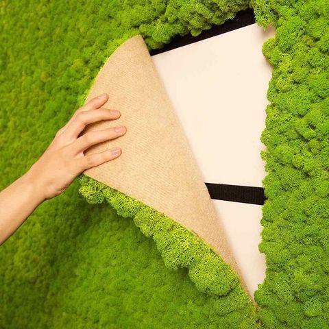 Green, Grass, Leaf, Hand, Textile, Plant, Shrub,