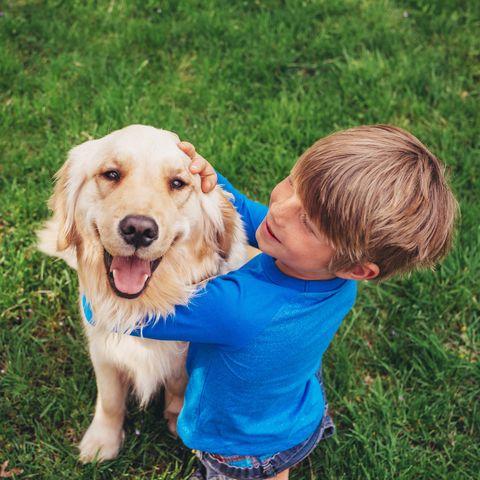 Smiling Boy sitting in garden stroking his golden retriever dog
