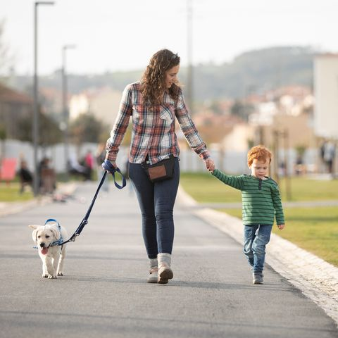jobs for stay at home moms - Mother and son walking with pet puppy on quiet road