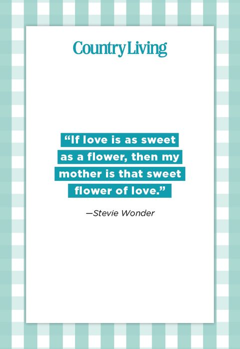quote about a mother from stevie wonder