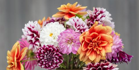 20 Best Mother S Day Flower Delivery Services Where To Buy