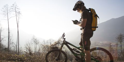 Mountain biker sends text from forest track, mountains