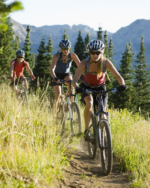 mountain bikers riding along a trail