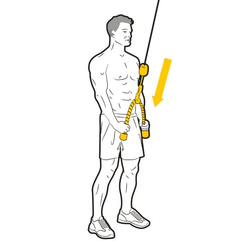 Standing, Joint, Arm, Shoulder, Human body, Leg, Elbow, Line art,