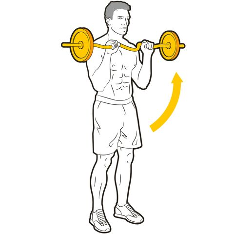 Weights, Exercise equipment, Overhead press, Standing, Weightlifting, Joint, Shoulder, Physical fitness, Arm, Barbell,