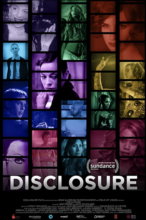movie poster for disclosure
