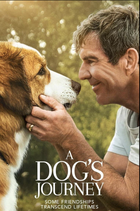 movie poster for a dog's journey