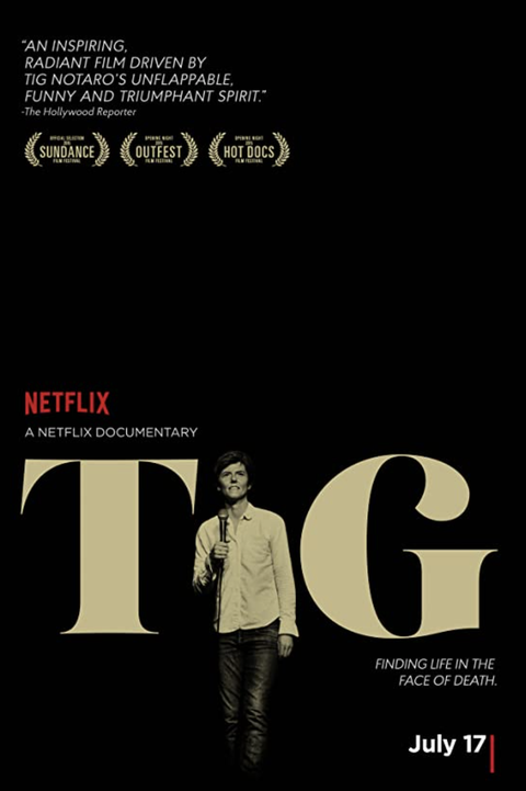 movie poster for tig