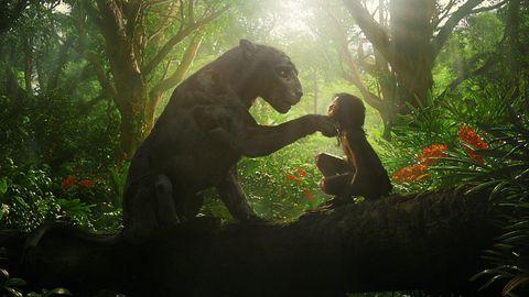 la pantera y mowgli hablan en un árbol en la película de netflix