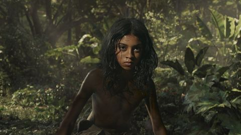 Mowgli-Warner