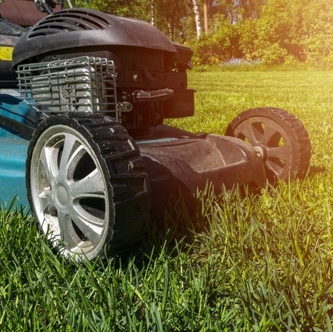 Mowing lawns, Lawn mower on green grass, mower grass equipment, mowing gardener care work tool, close up view, sunny day. Soft lightning