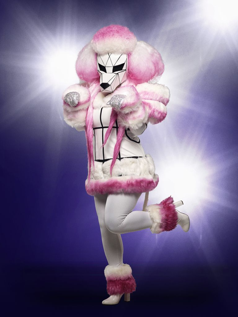 Every Masked Singer Reveal in Season 1 , Who Is The Masked