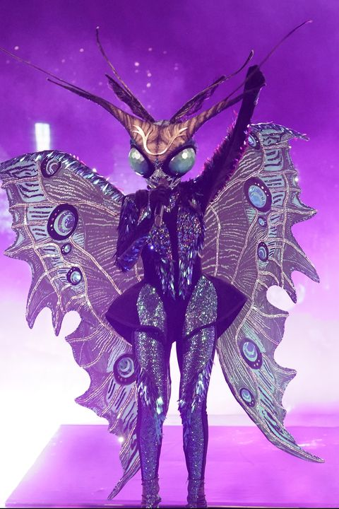 Purple, Violet, Butterfly, Cg artwork, Fictional character, Wing, Illustration, Moths and butterflies, Graphic design, Insect,