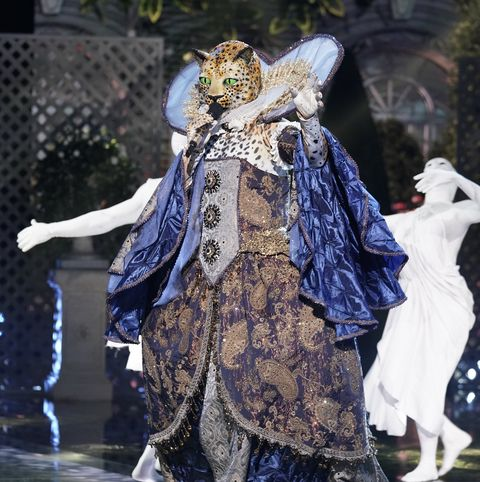 Costume design, Outerwear, Costume, Dress, Event, Carnival, Art, Performance, Fictional character,