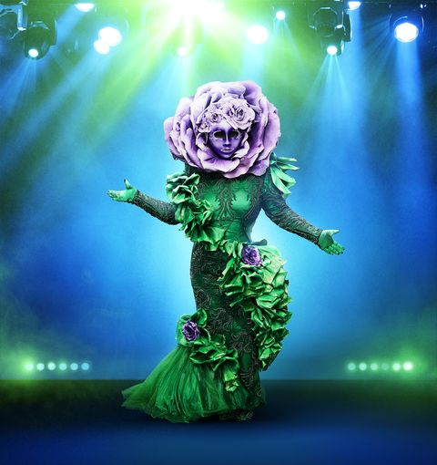 Green, Performance, Performing arts, Stage, Performance art, Event, Musical theatre, Fictional character, Plant, Action figure,
