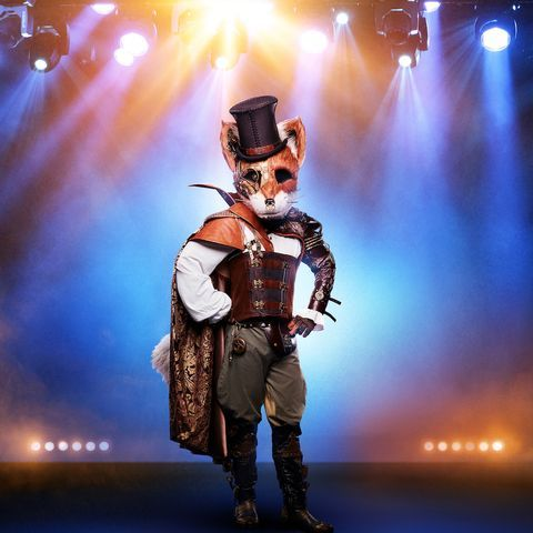 Who Is the Fox on 'The Masked Singer'? Fans Have a Super Intriguing Guess