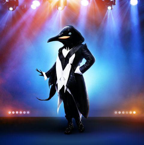 Penguin, Bird, Flightless bird, Sky, Performance, Fictional character,