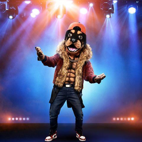 rottweiler-the-masked-singer