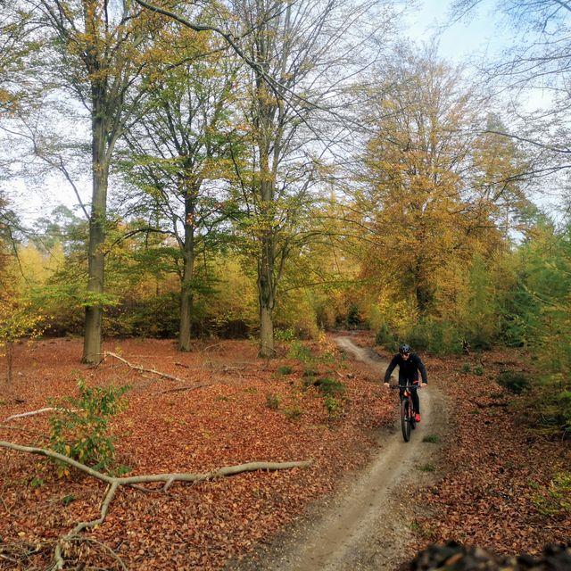 mtb routes, mountainbike, mountainbikeroute, nederland