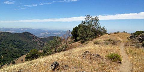 Mt. Diablo Trail California
