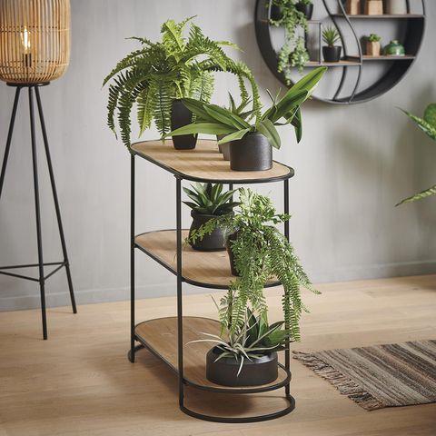 Mueble con plantas
